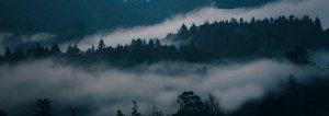 landskap, molningt